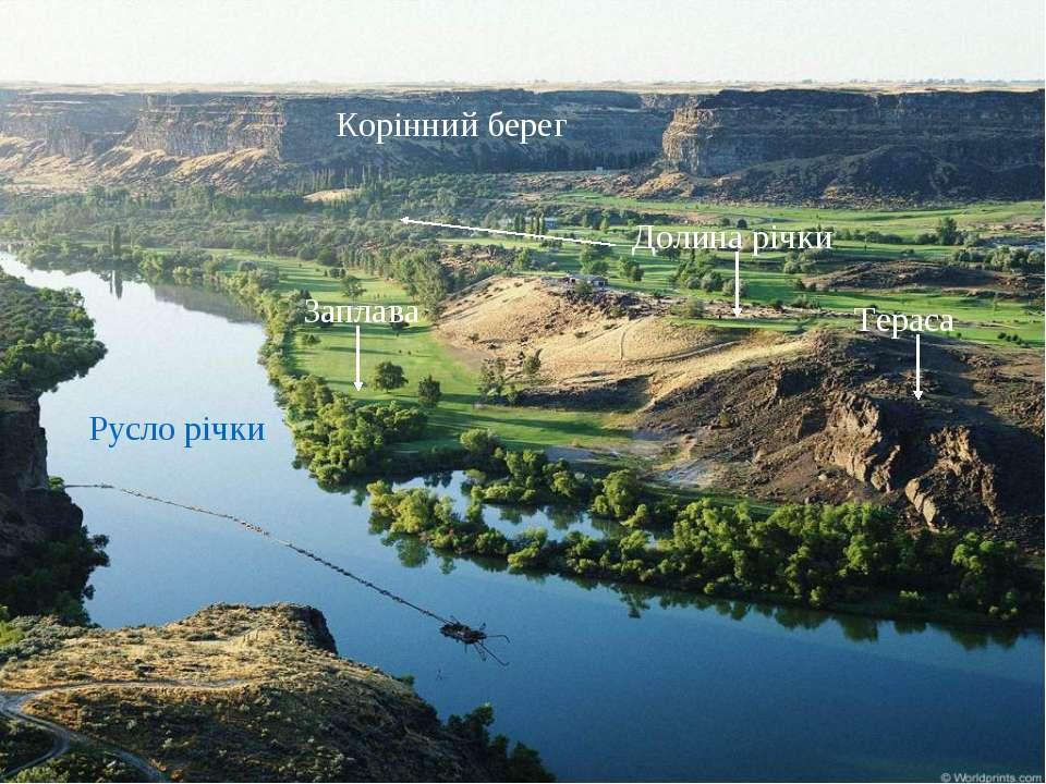 Русло річки Корінний берег Заплава Долина річки Тераса