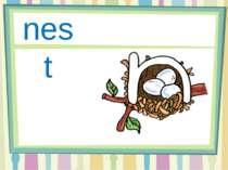 Nn nest