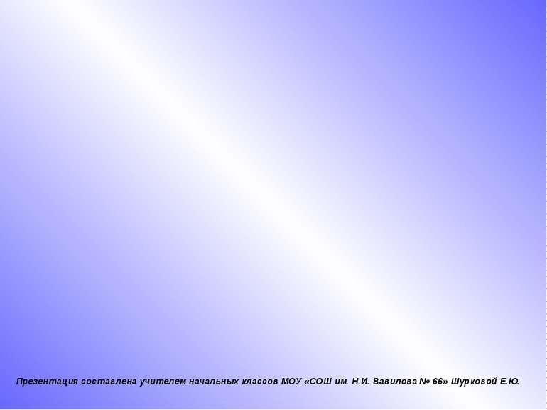 Презентация составлена учителем начальных классов МОУ «СОШ им. Н.И. Вавилова ...