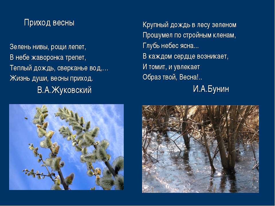 Приход весны Зелень нивы, рощи лепет, В небе жаворонка трепет, Теплый дождь, ...