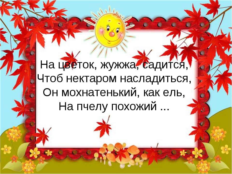 На цветок, жужжа, садится, Чтоб нектаром насладиться, Он мохнатенький, как ел...