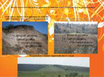 Фактори екологічних порушень що впливають на зменшення кількості рідкісних ви...