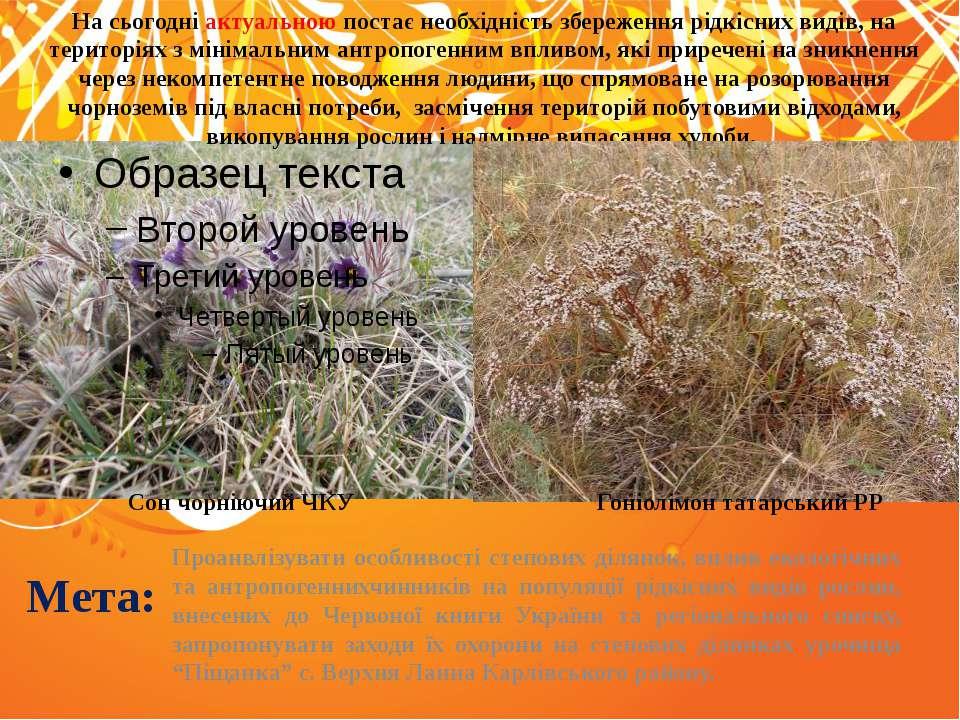 Мета: Проанвлізувати особливості степових ділянок, вплив екологічних та антро...