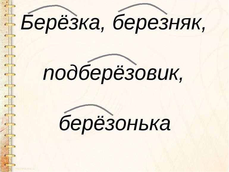 Берёзка, березняк, подберёзовик, берёзонька
