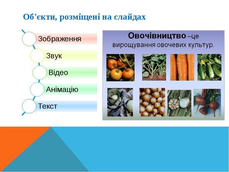 Об'єкти, розміщені на слайдах