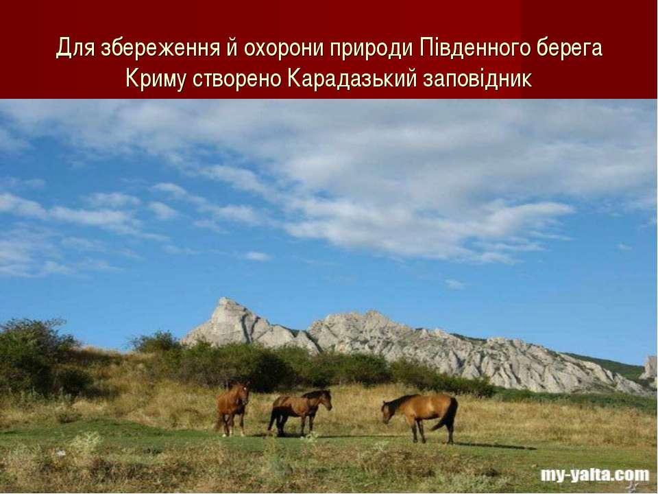 Для збереження й охорони природи Південного берега Криму створено Карадазький...