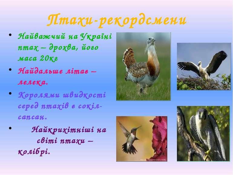 Птахи-рекордсмени Найважчий на Україні птах – дрохва, його маса 20кг Найдальш...