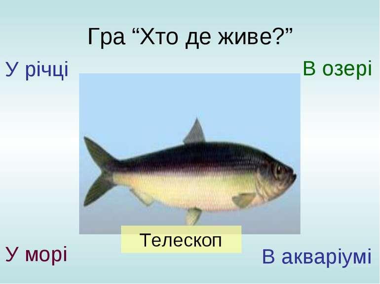 """Гра """"Хто де живе?"""" У річці У морі В озері В акваріумі Телескоп"""