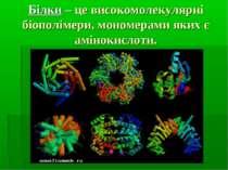 Білки – це високомолекулярні біополімери, мономерами яких є амінокислоти.