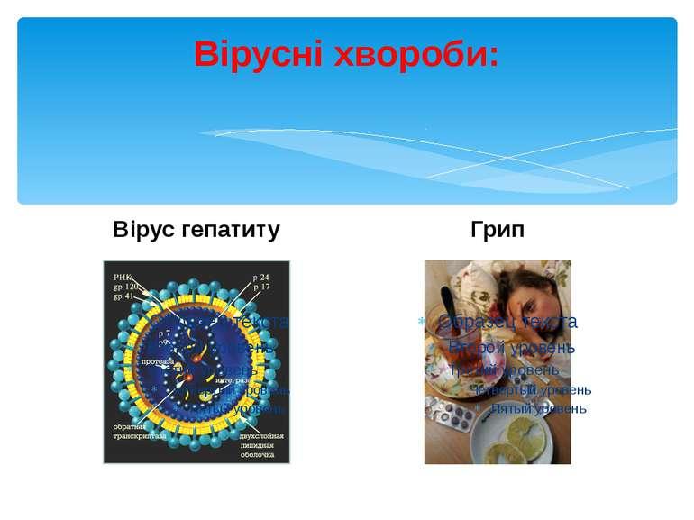 Вірусні хвороби: Вірус гепатиту Грип