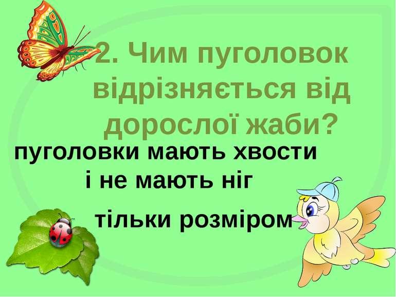 2. Чим пуголовок відрізняється від дорослої жаби? тільки розміром пуголовки м...