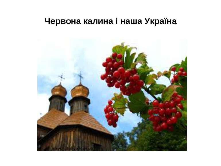 Червона калина і наша Україна