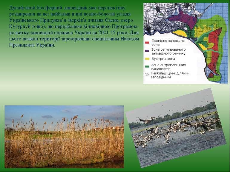Дунайський біосферний заповідник має перспективу розширення на всі найбільш ц...