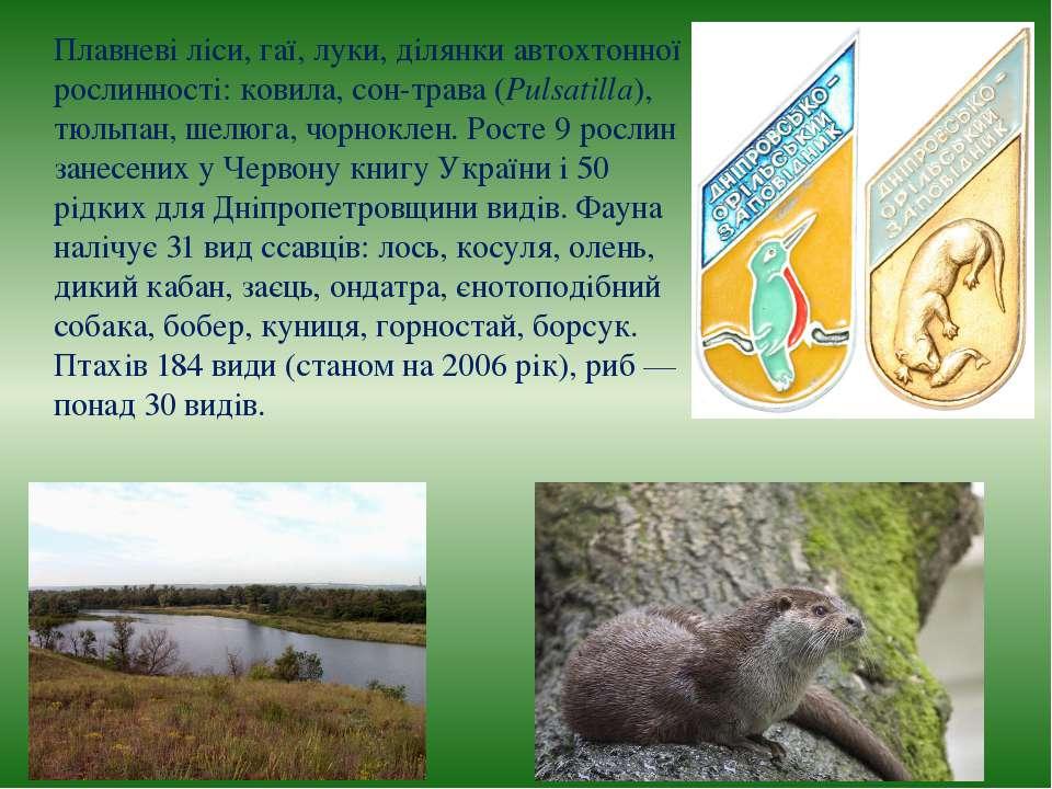 Плавневі ліси, гаї, луки, ділянки автохтонної рослинності: ковила, сон-трава ...