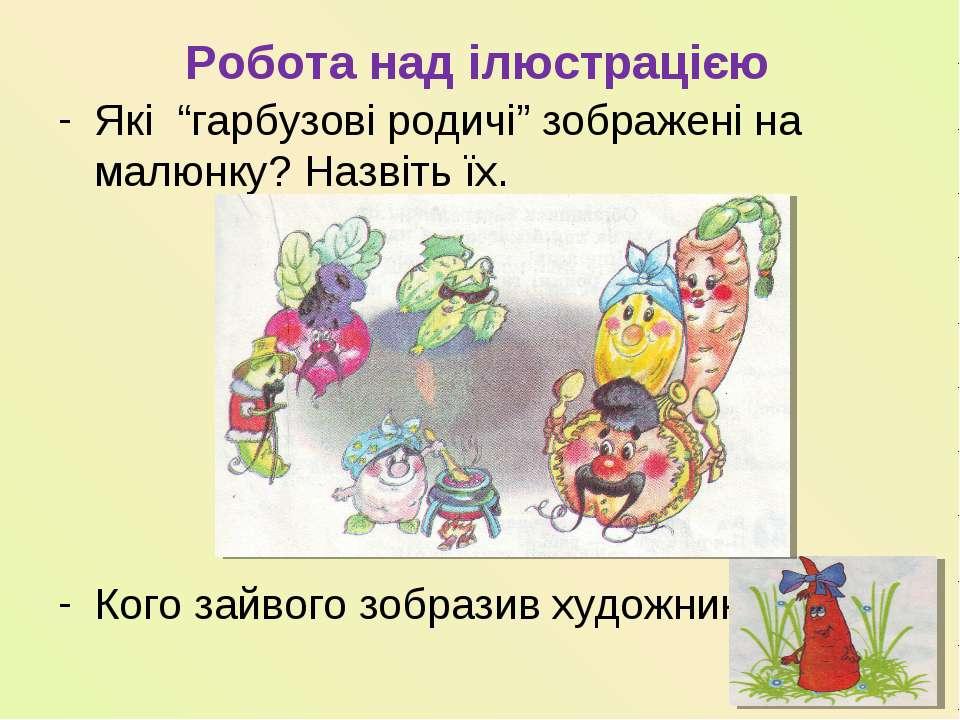 """Робота над ілюстрацією Які """"гарбузові родичі"""" зображені на малюнку? Назвіть ї..."""