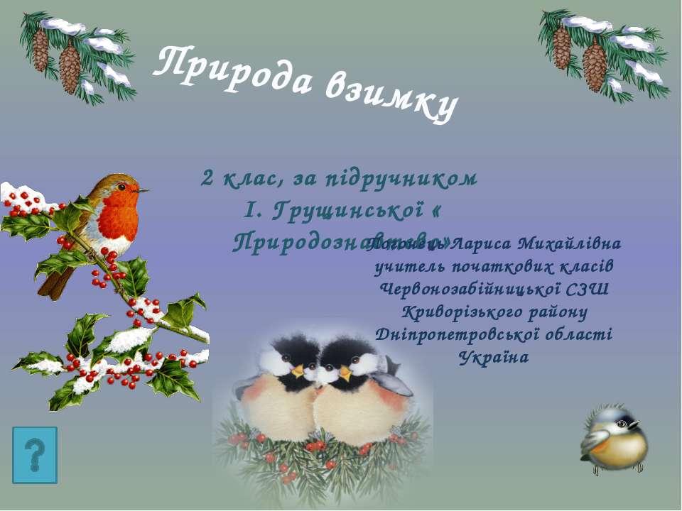 Природа взимку 2 клас, за підручником І. Грущинської « Природознавтсво» Погон...