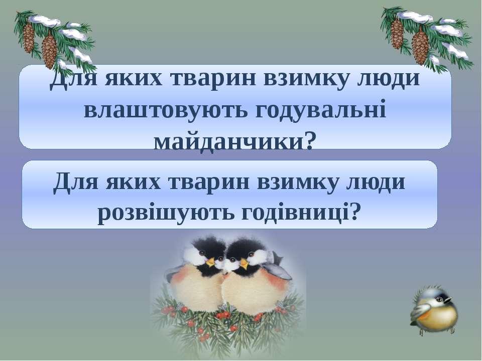 Для диких тварин. Для яких тварин взимку люди влаштовують годувальні майданчи...