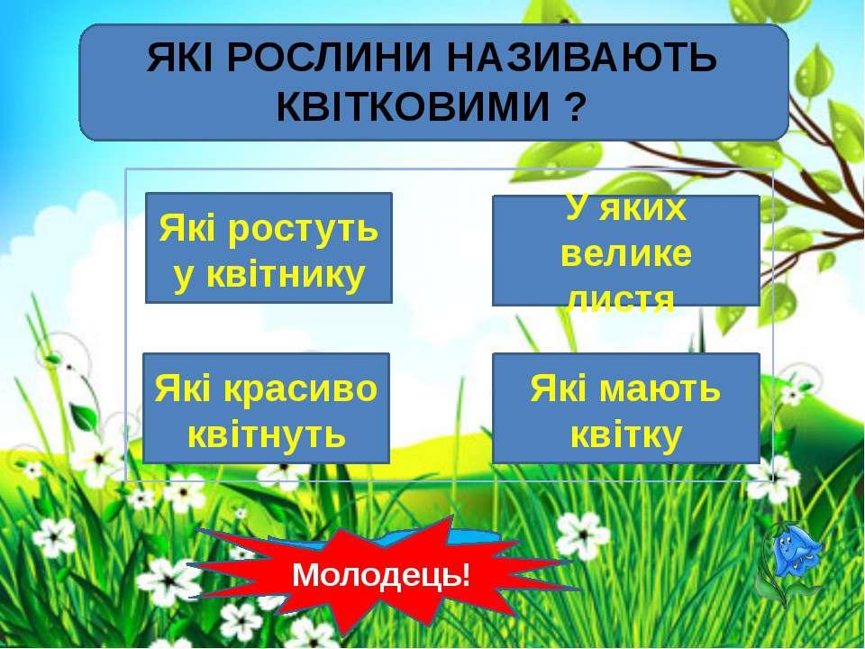 Інтернет-джерела http://interesnyesaity.ru/wp-content/uploads/grass1.jpg фон ...