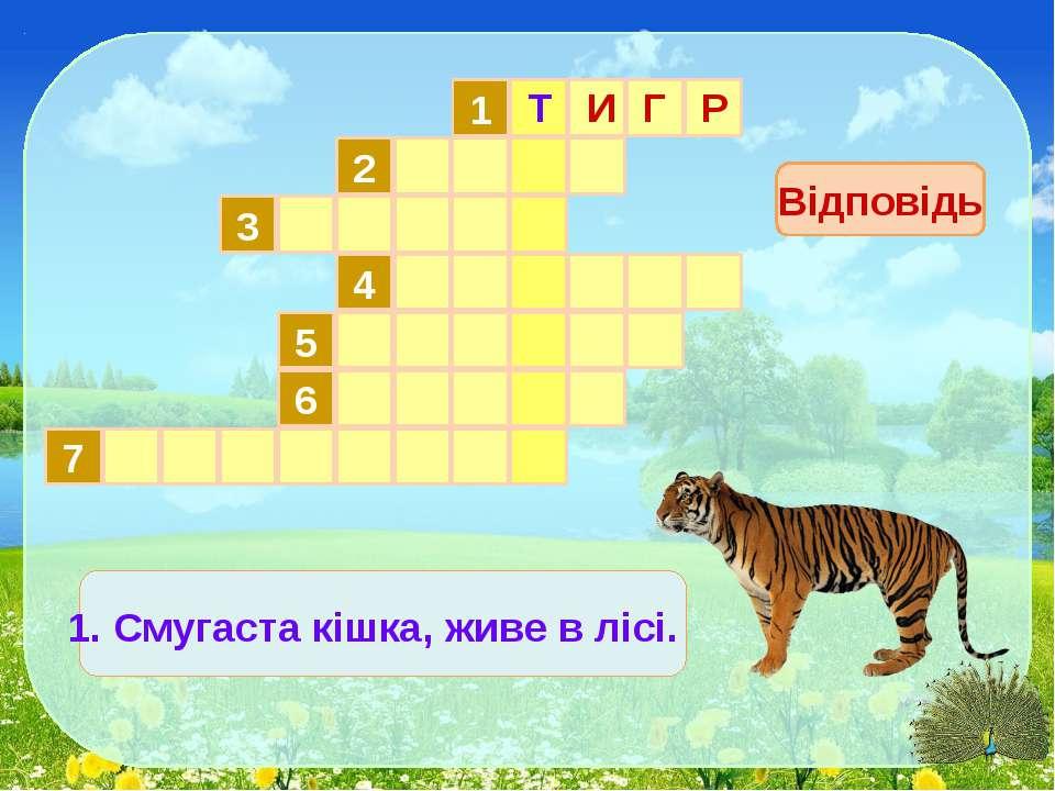1 2 3 4 5 6 7 Відповідь