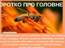 Для наповнення свого медового зобика, що вміщує 40 мг нектару, бджола повинна...