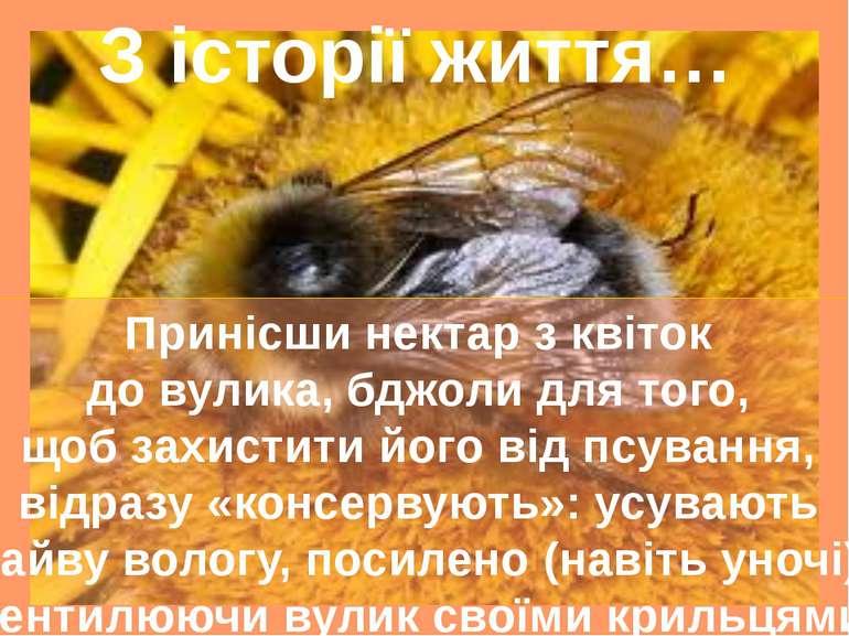 З історії життя… Принісши нектар з квіток до вулика, бджоли для того, щоб зах...
