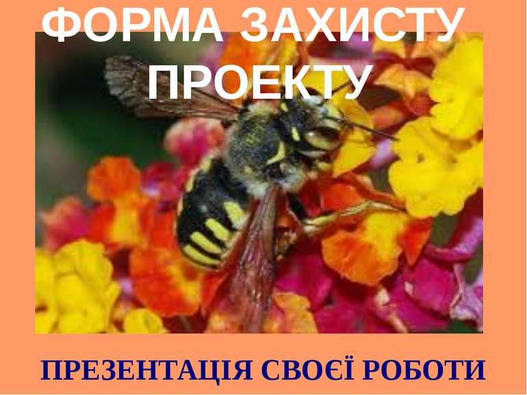 ФОРМА ЗАХИСТУ ПРОЕКТУ ПРЕЗЕНТАЦІЯ СВОЄЇ РОБОТИ