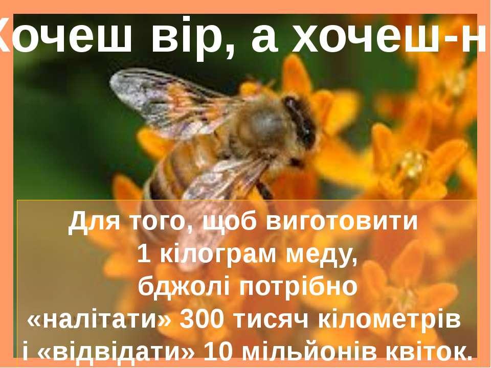 Для того, щоб виготовити 1 кілограм меду, бджолі потрібно «налітати» 300 тися...
