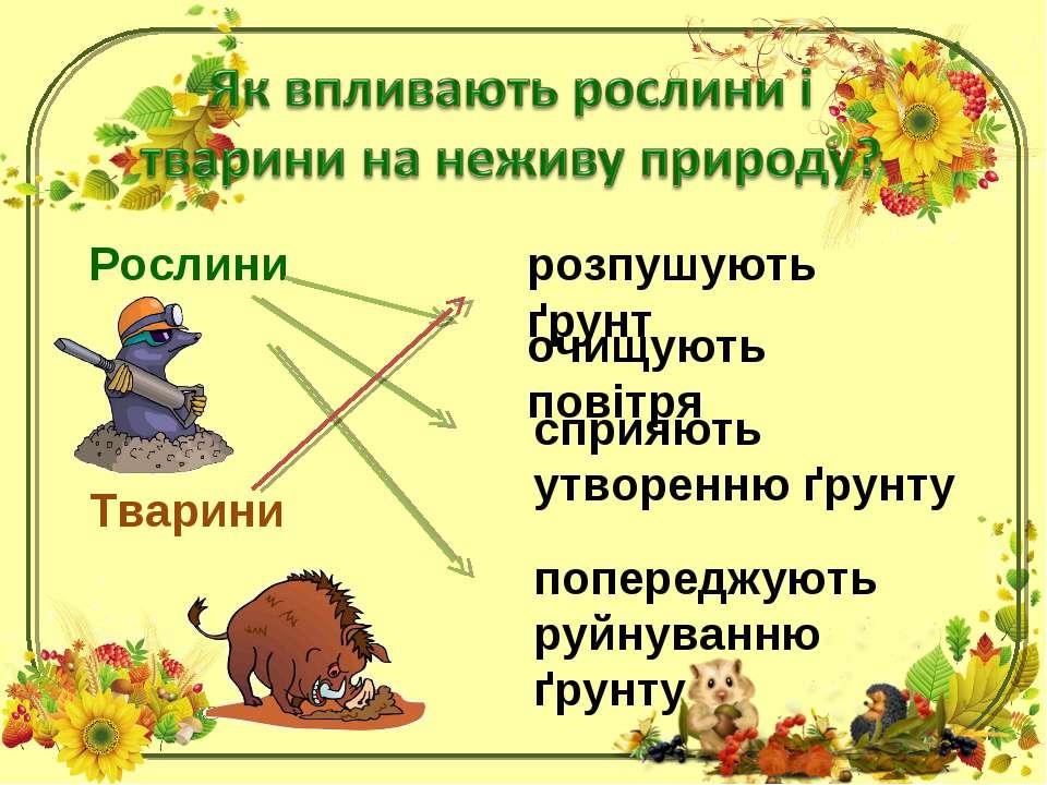 Рослини розпушують ґрунт Тварини очищують повітря сприяють утворенню ґрунту п...