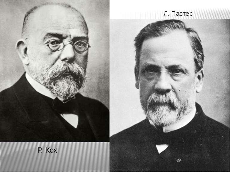 Л. Пастер Р. Кох