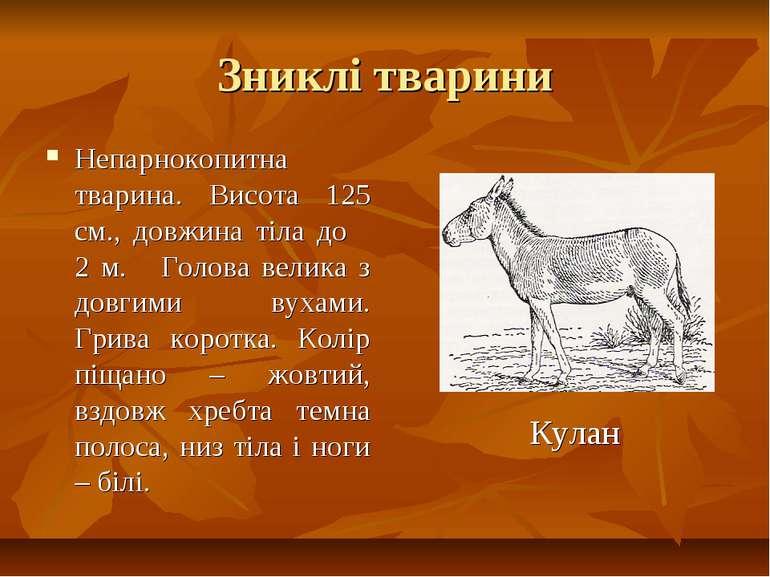 Зниклі тварини Непарнокопитна тварина. Висота 125 см., довжина тіла до 2 м. Г...