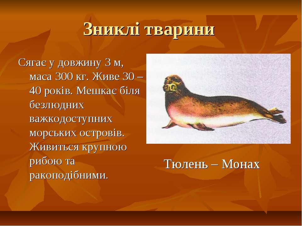 Зниклі тварини Сягає у довжину 3 м, маса 300 кг. Живе 30 – 40 років. Мешкає б...