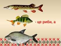 - це риби, а
