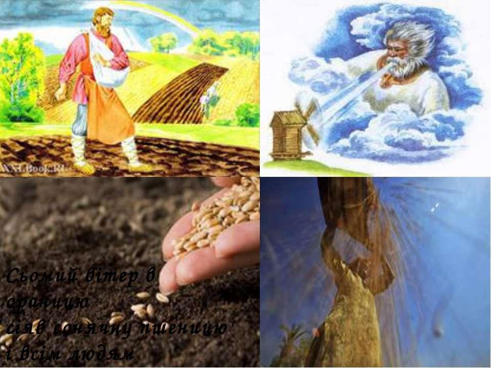 Сьомий вітер в ораницю сіяв сонячну пшеницю і всім людям працьовитим побажав ...