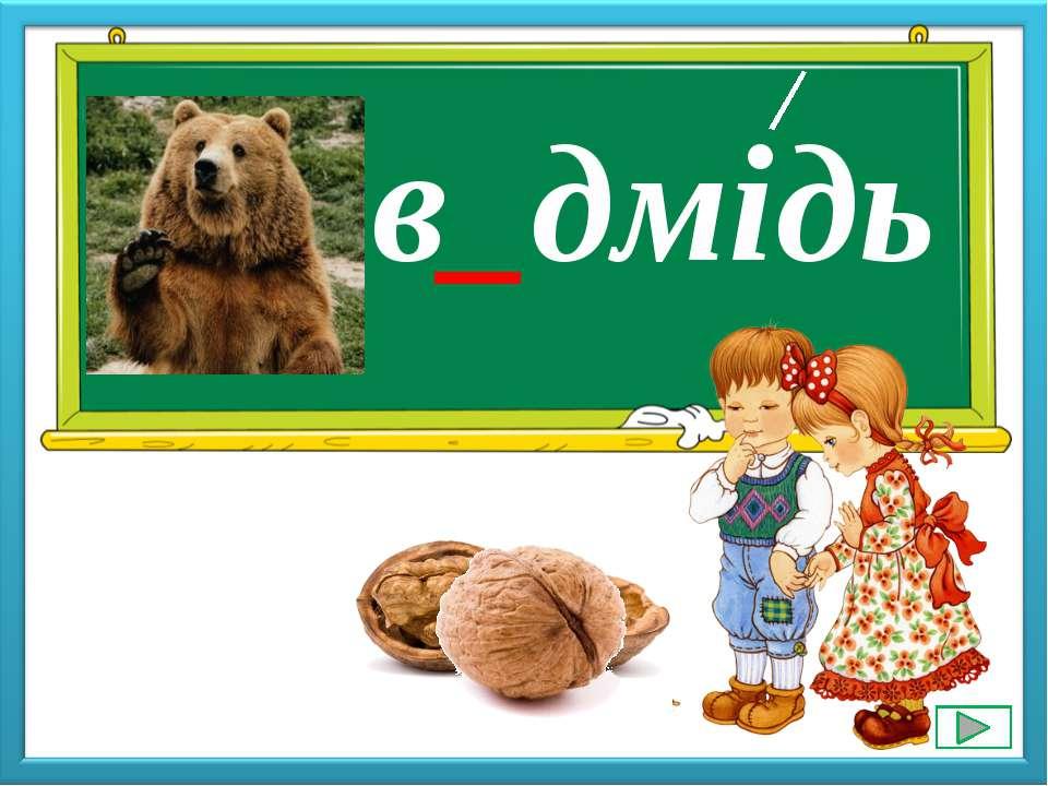в_дмідь е