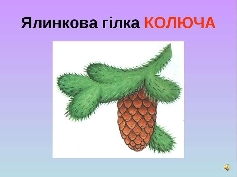 Ялинкова гілка КОЛЮЧА