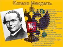 Йоганн Мендель народився 20 липня1822р.у селянській родині Антона та Розин...