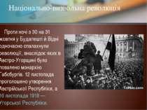 Проти ночі з 30 на 31 жовтня у Будапешті й Відні одночасно спалахнули революц...