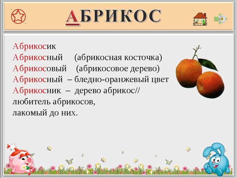 Абрикосик Абрикосный (абрикосная косточка) Абрикосовый (абрикосовое дерево) А...
