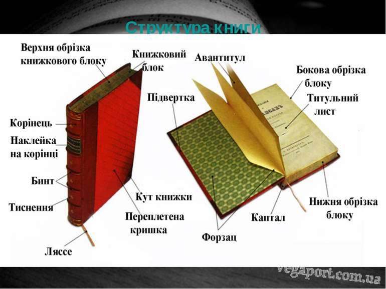 Структура книги