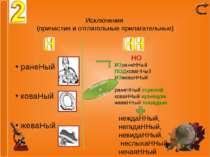 Исключения (причастия и отглагольные прилагательные) ранеНый коваНый жеваНый ...
