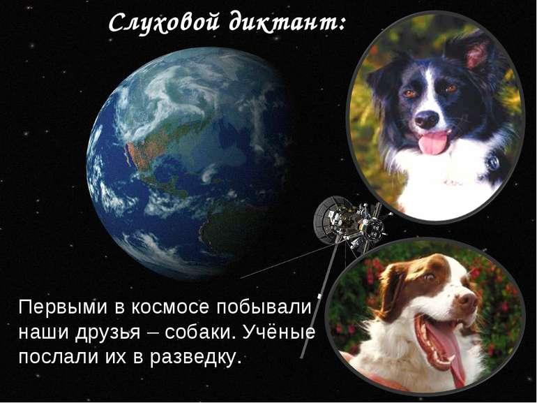 Слуховой диктант: Первыми в космосе побывали наши друзья – собаки. Учёные пос...