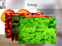 Energy Beta-carotene Beta Carotene is a carotenoid compound responsible for g...