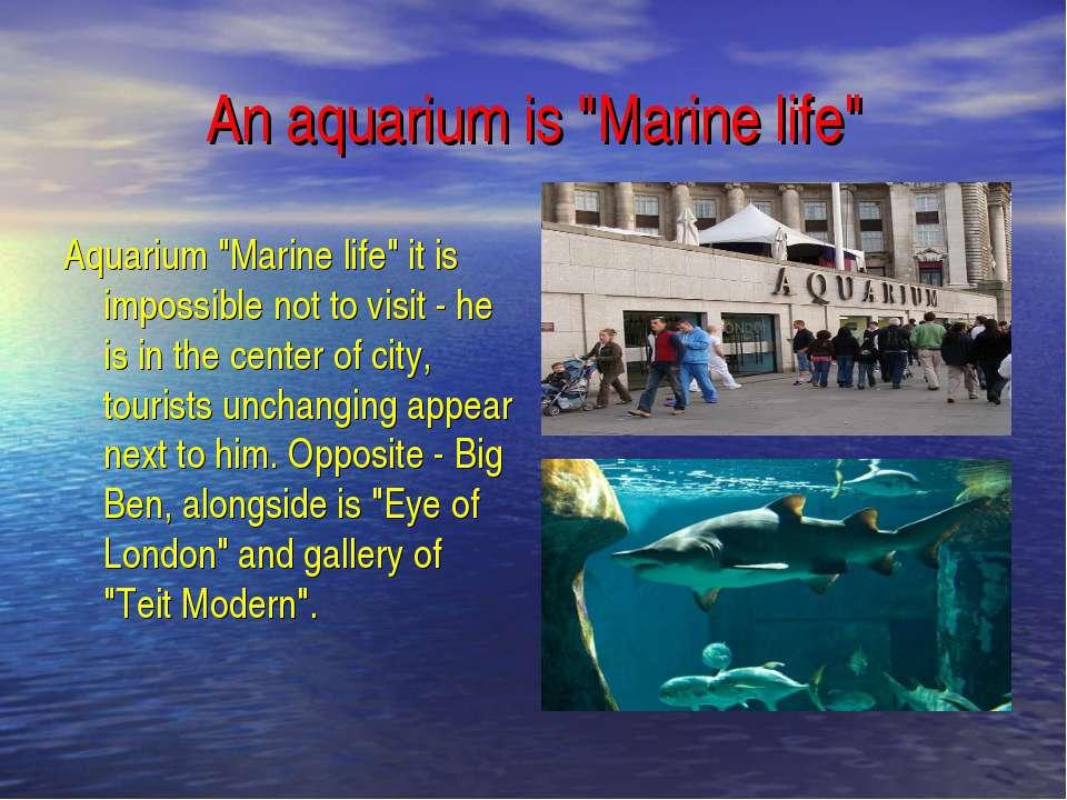 """An aquarium is """"Marine life"""" Aquarium """"Marine life"""" it is impossible not to v..."""