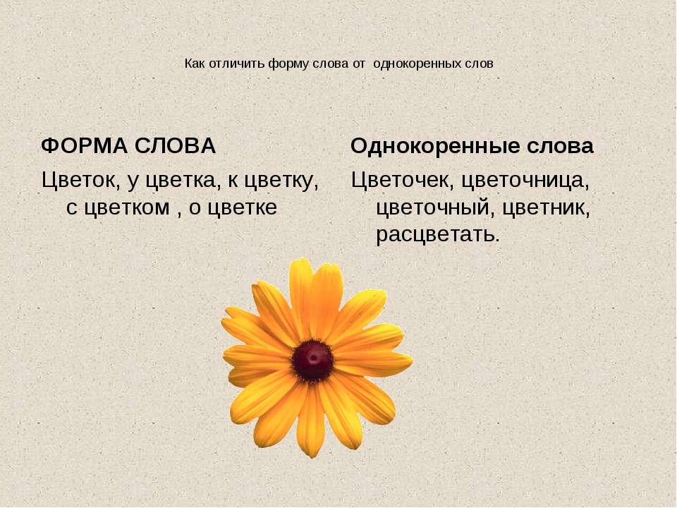 Однокоренное слово к слову цветок