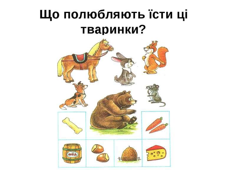 Що полюбляють їсти ці тваринки?