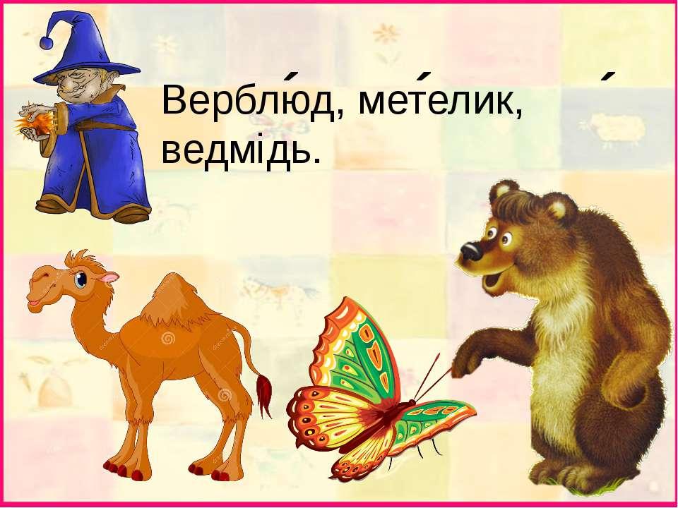 Верблюд, метелик, ведмідь. ´ ´ ´