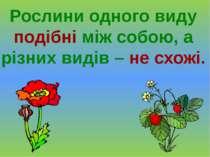 Рослини одного виду подібні між собою, а різних видів – не схожі.