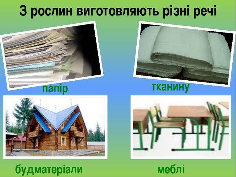 З рослин виготовляють різні речі папір меблі будматеріали тканину