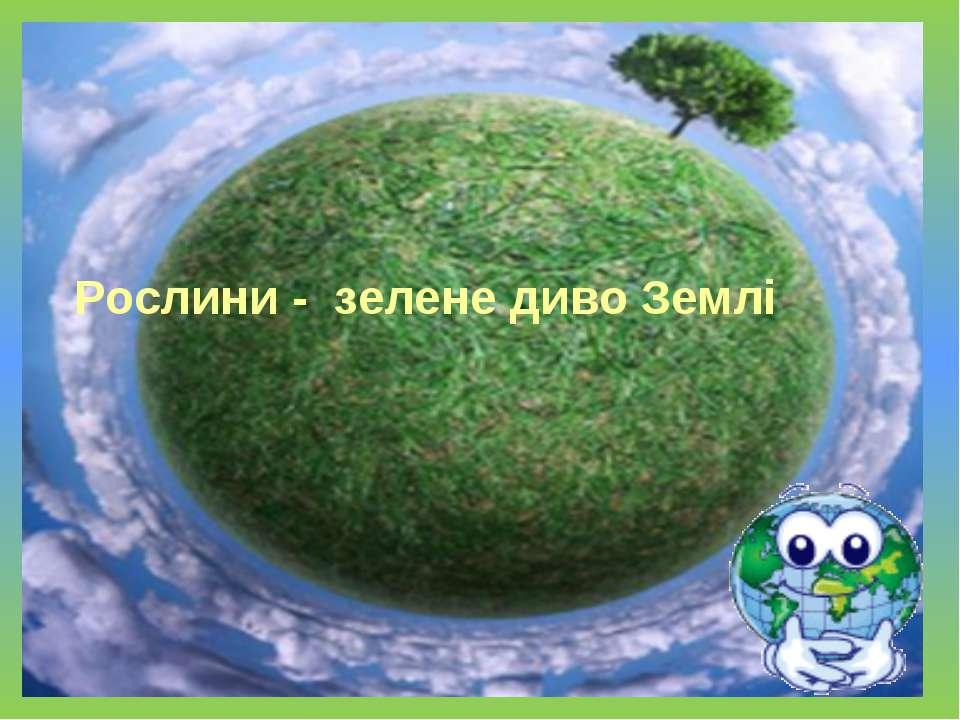 Рослини - зелене диво Землі