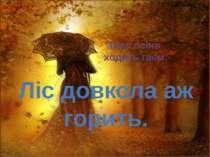 Тихо осінь ходить гаєм. Ліс довкола аж горить. 29.09.2014 Неня-Лука